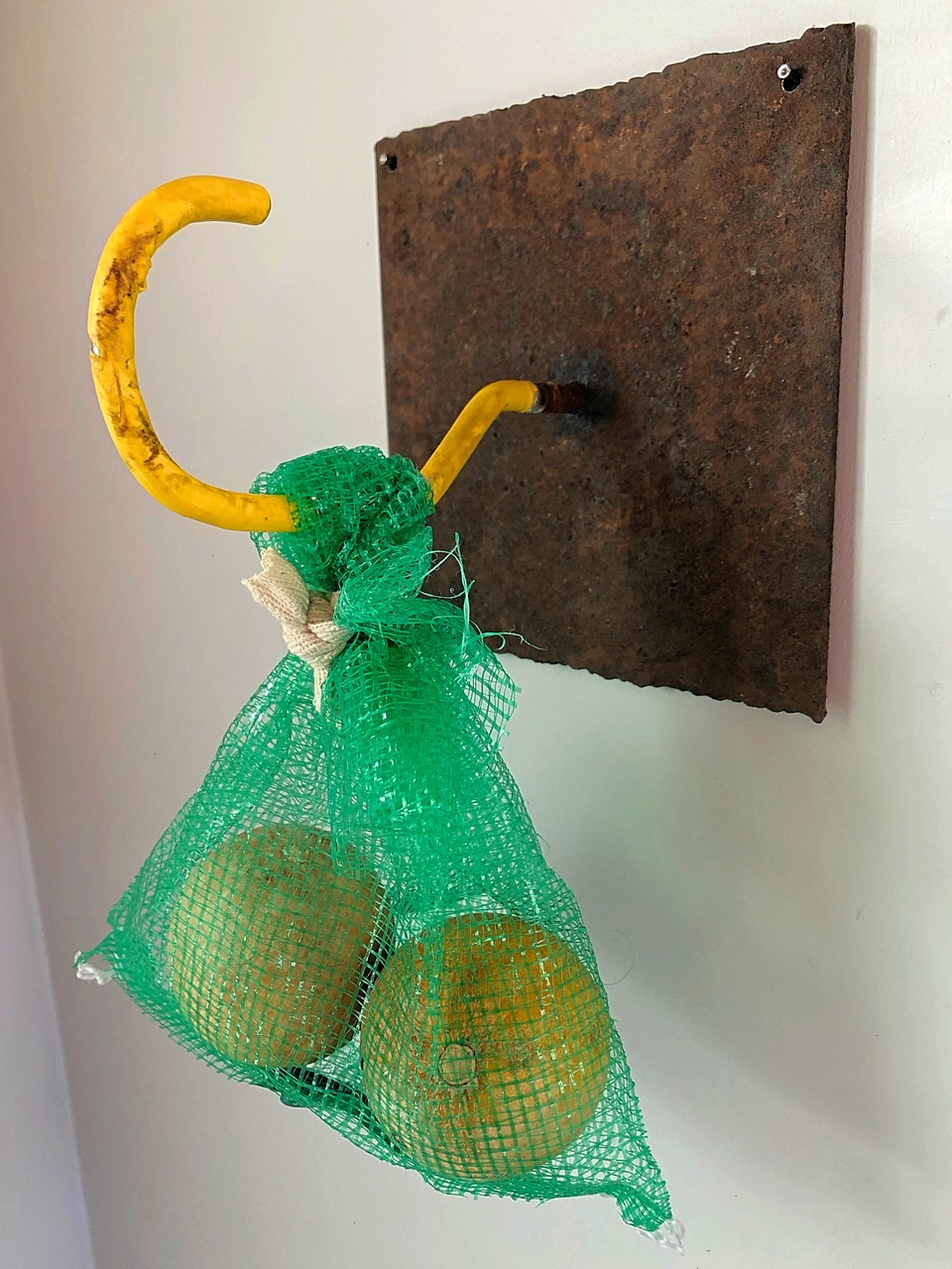 "CLOSER, 2021 | Steel plate, utility hook, bag and gourds, 10"" x 6"" x 6"" 