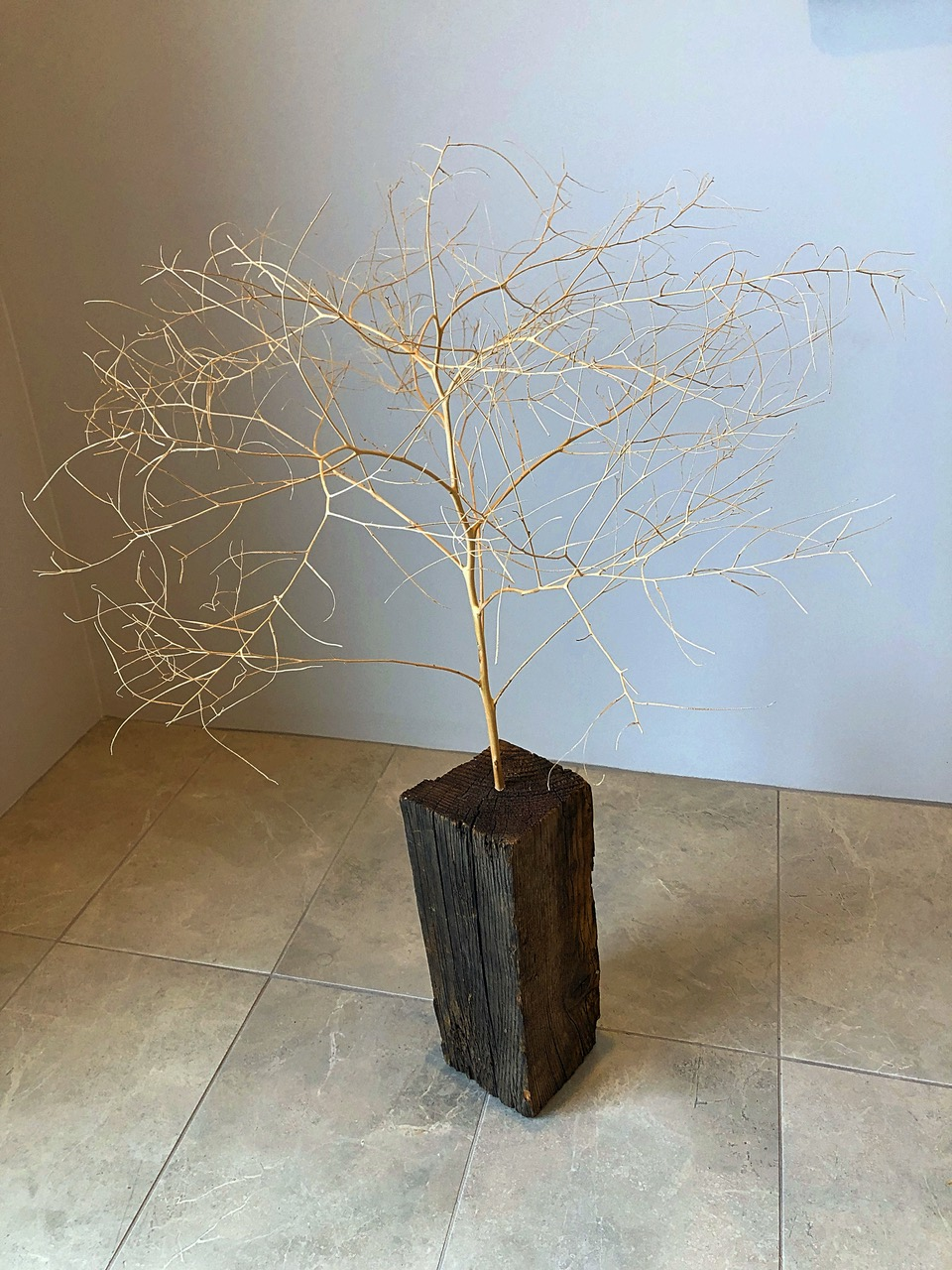 "Bring the Wood, 2020 | Tumble weed and found wood block, 36"" x 24"" x 24"" 