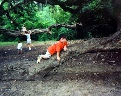 Boy in Tree | New Orleans LA | 1996